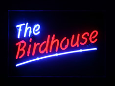 the birdhouse in neon